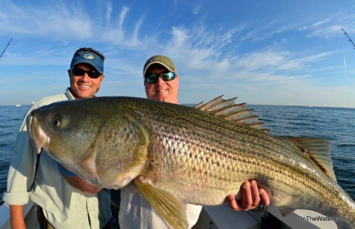 Flippin out charters for Best striper fishing spot in ri